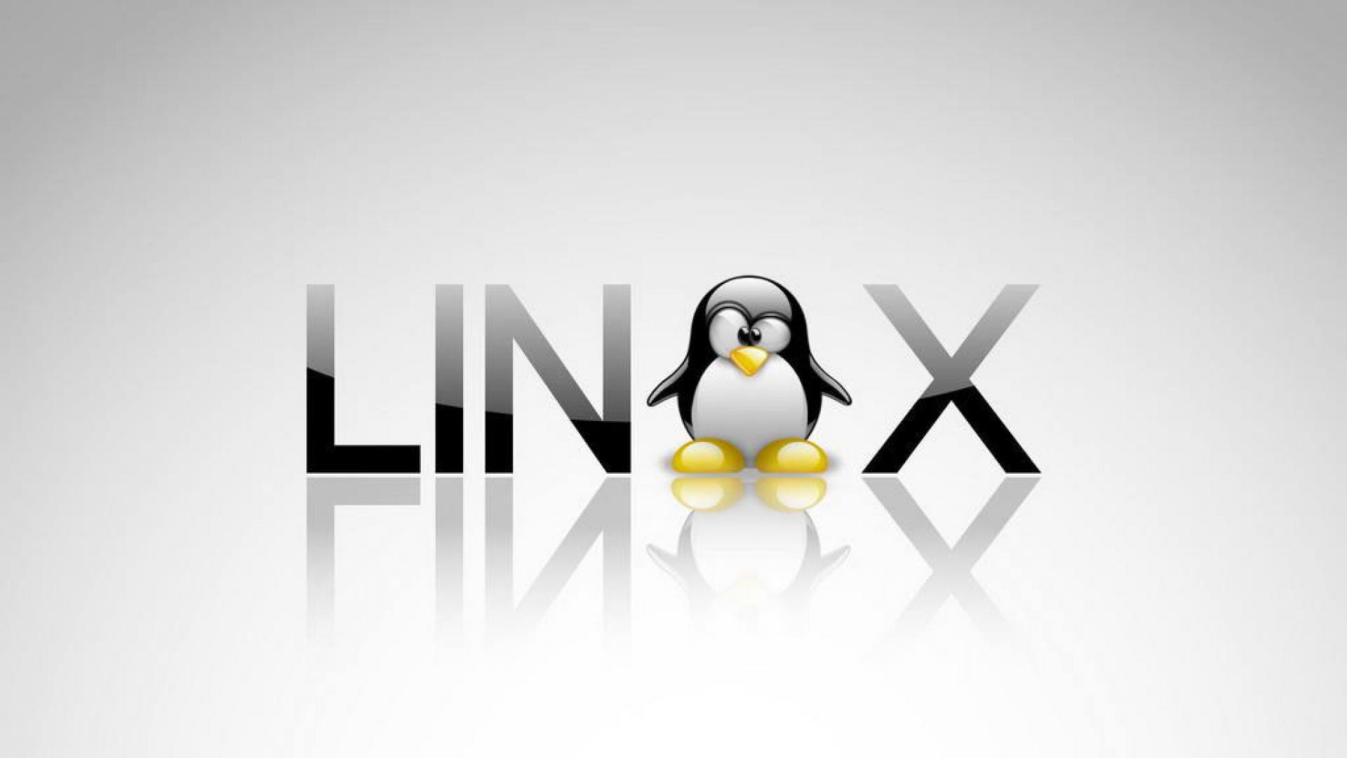 دوره آنلاین لینوکس حرفهای